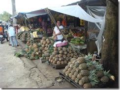 フィリピン(23.11.04) 088